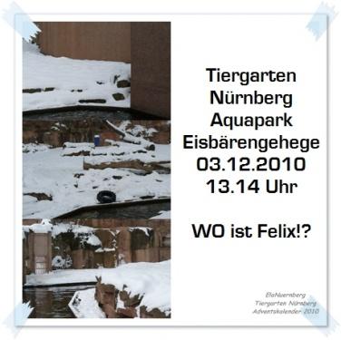 Türchen 4 - Wo ist Eisbär Felix?
