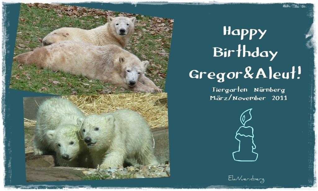 Happy B Day Gregor Aleut Die Eisbärenrabauken Sind Heute