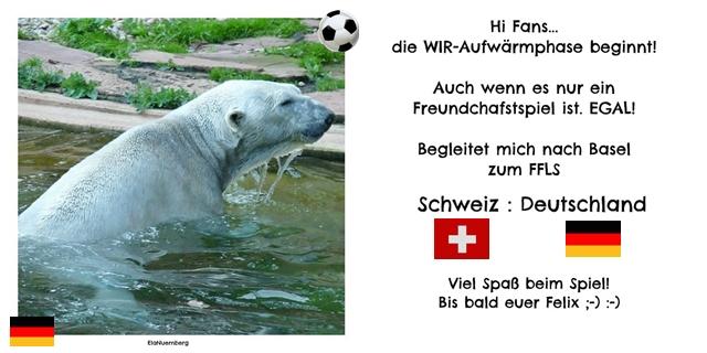 Eisbär Felix DER Fanbeauftragte aus dem Tiergarten Nürnberg