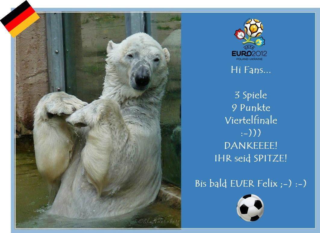 Eisbär Felix Dänemark Danke! Blog