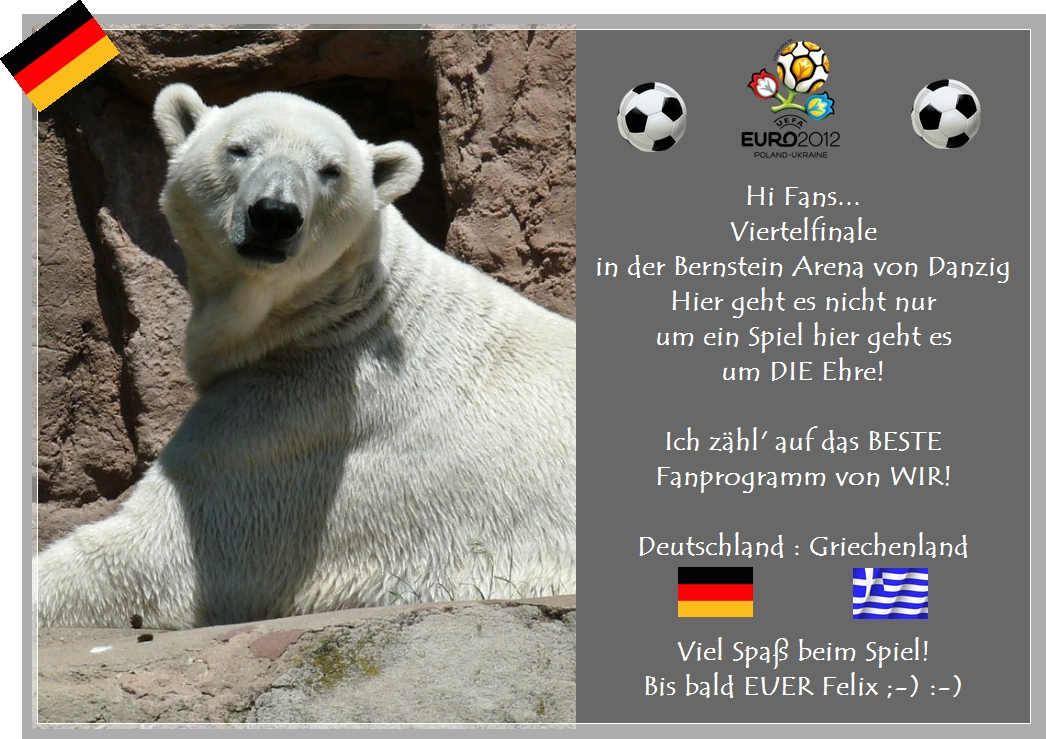 Felix Der Fanbeauftragte Spricht Eisbärblond