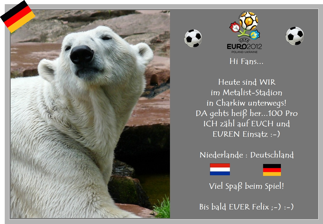 Eisbär Felix DER FanBeauftragte - NL -WIR- 2012