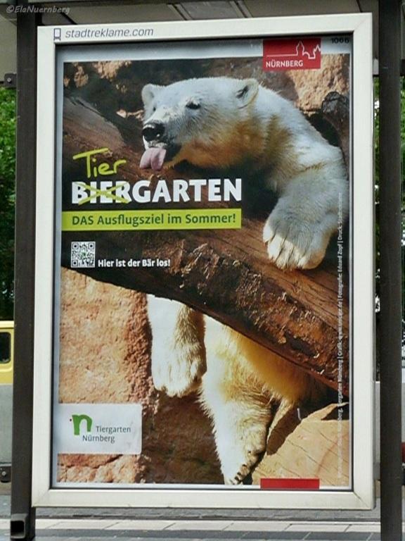 Schönen WahlSonntag - Eisbär Aleut - Tiergarten Nürnberg