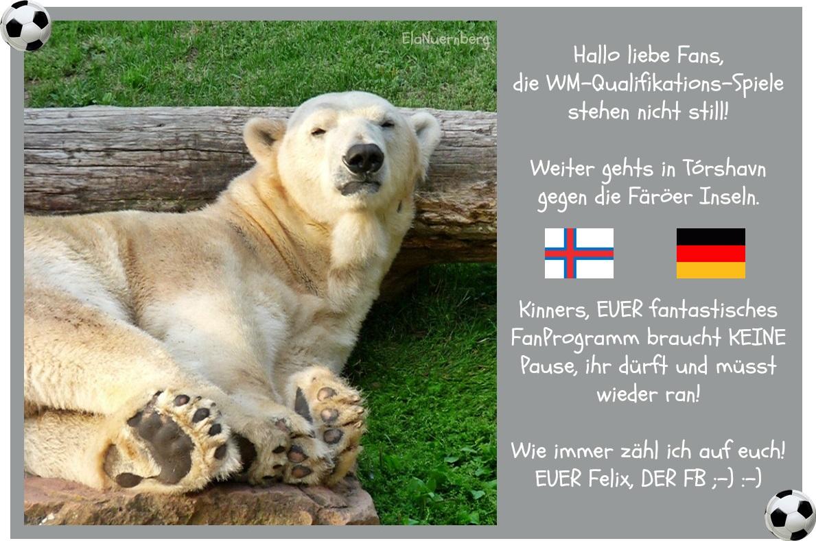 DER FanBeauftragte - Eisbär Felix, der FB - Färöer Inseln 2013 09 10