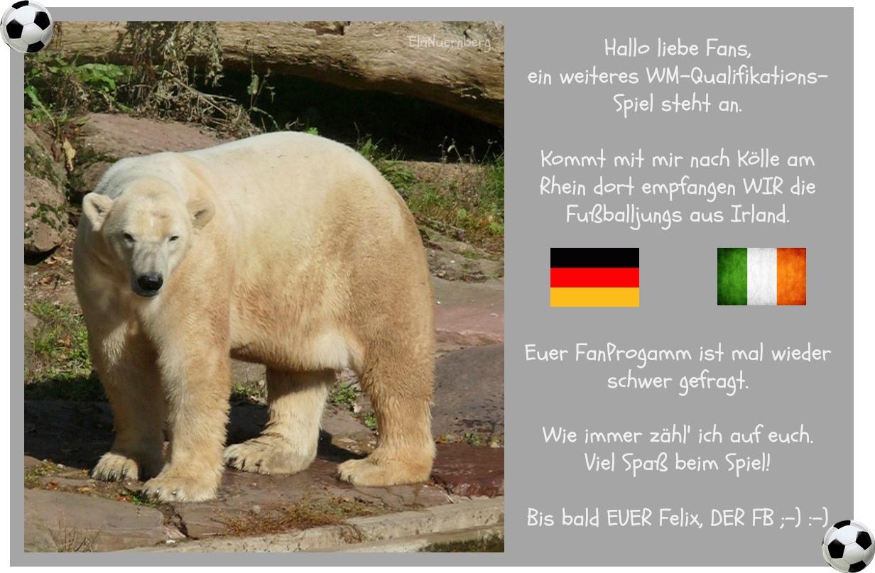 DER FanBeauftragte - Felix, DER FB - WIR - Irland - 2013