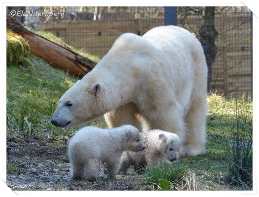 Giovanna und ihre Minis - Giovanna & Kinder - 2014 03 28 -