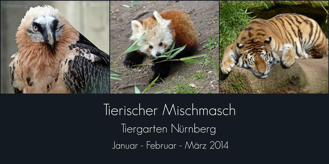 Tierischer Mischmasch - TiGa Nürnberg - 2014 01 -