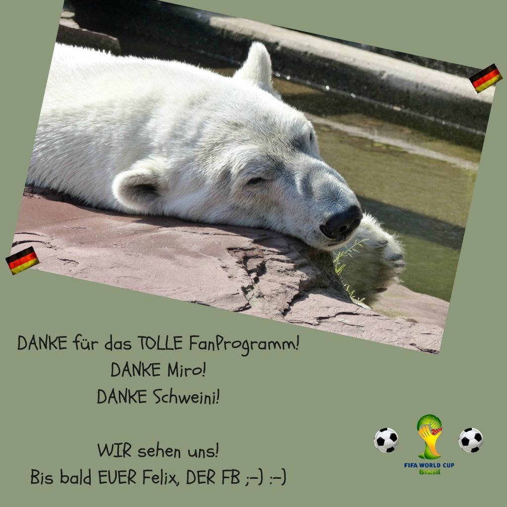 Eisbär Felix DER FanBeauftragte sagt Danke zum erfolgreichen Spiel
