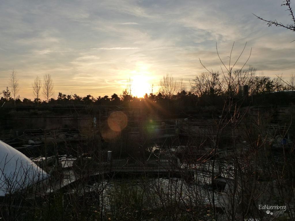 Corona-Zeit - Lagune - Tiergarten Nürnberg