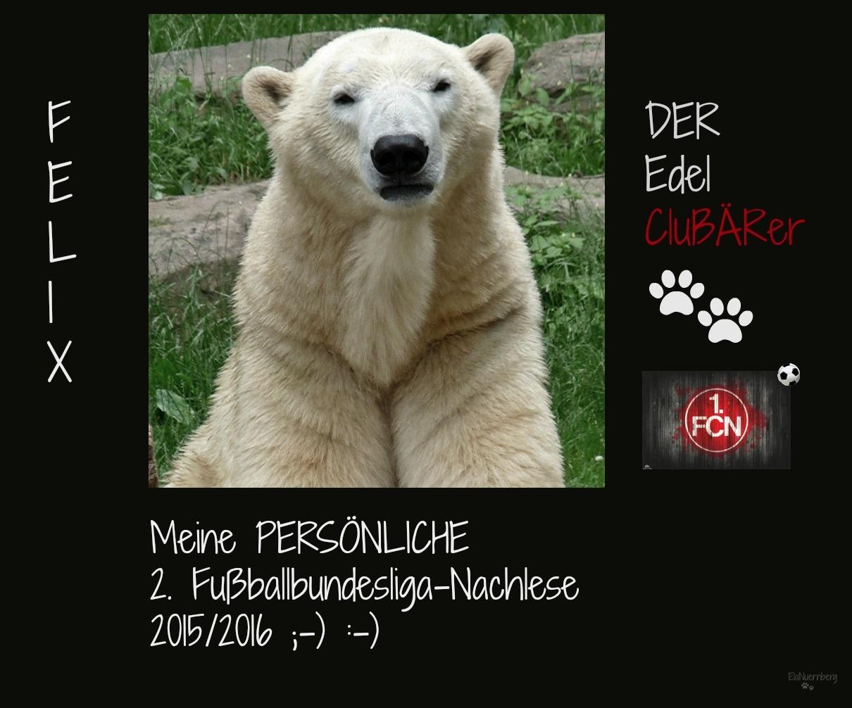 Eisbär und CluBÄRer Felix im Tiergarten Nürnberg