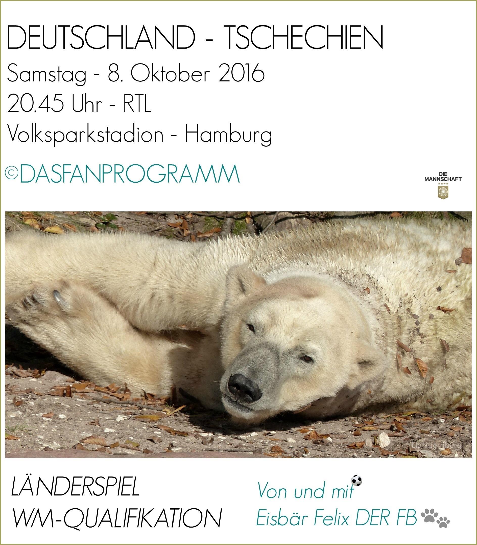 Eisbär Felix DER FanBeauftragte spricht - 10(2016