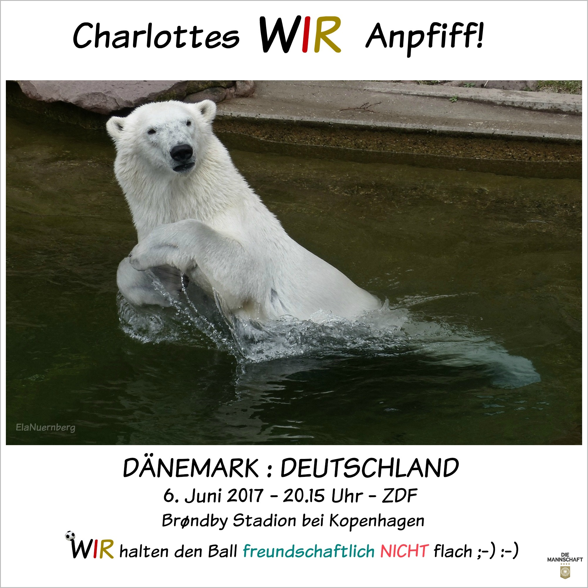 Eisbär Charlottes WIR-Anpfiff - Tiergarten Nürnberg - 06/2017
