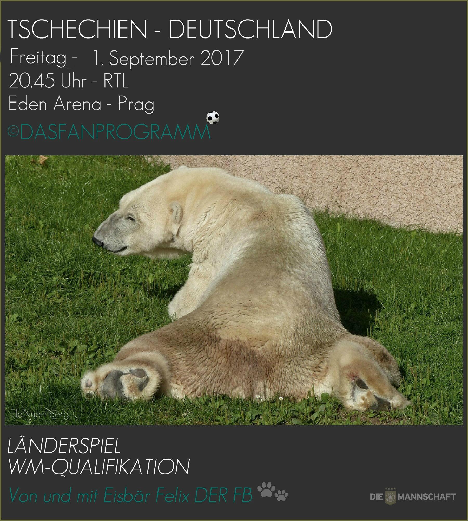 DER FanBeauftragte - FB Felix - Tschechien - Deutschland - 01.09.2017 -