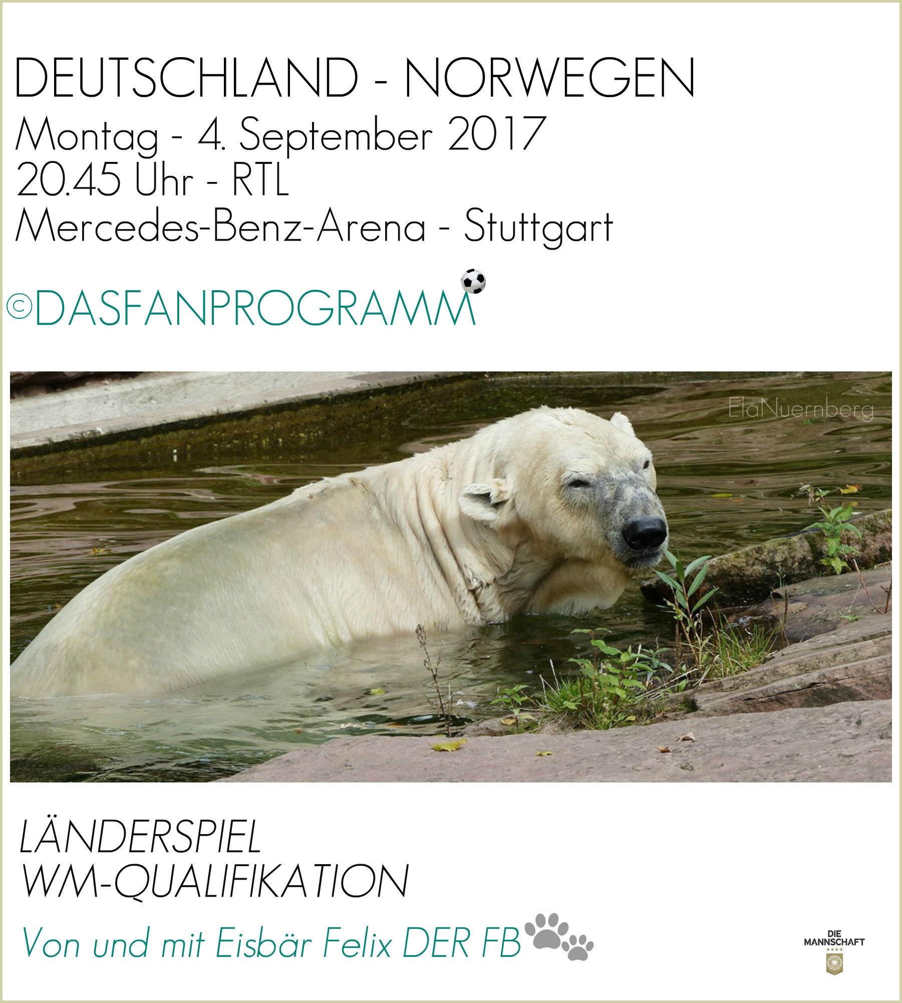 Eisbär Felix DER FanBeauftragte beim Baden