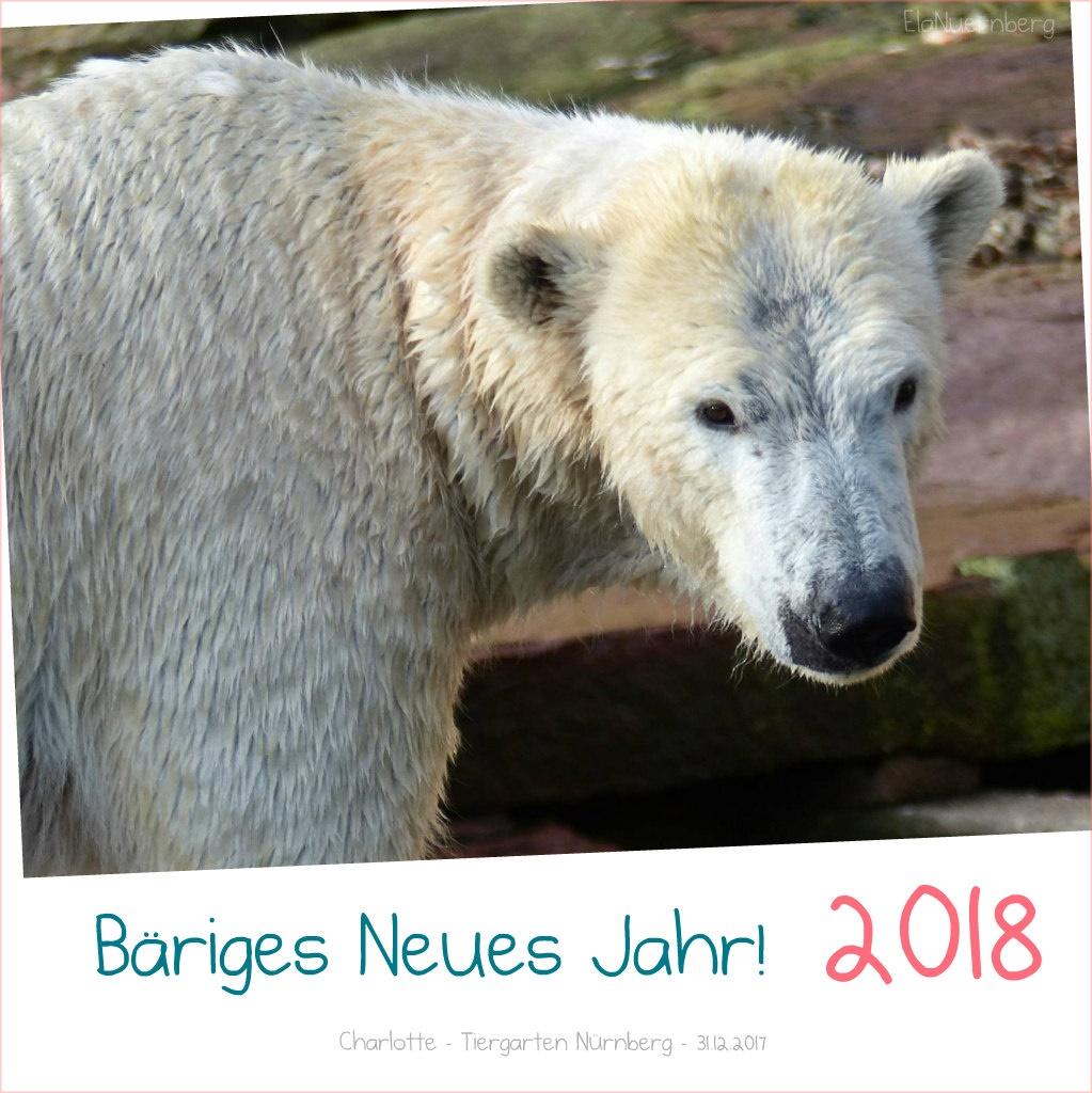 BÄRiges Neues Jahr wünscht Eisbär Charlotte