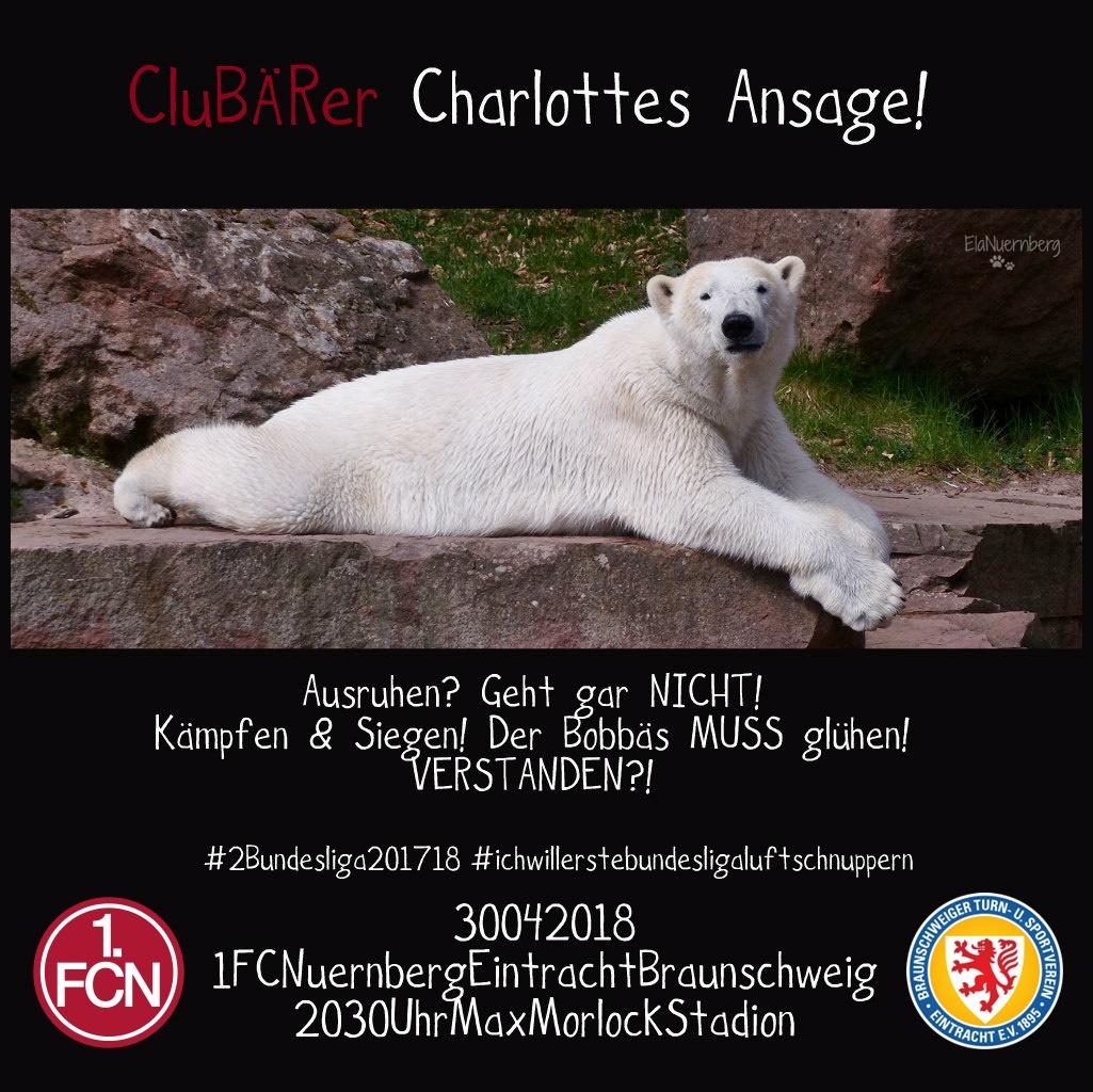 Drei, Zwo, Eins...Endspurt! - Eisbär und CluBÄRer Charlotte - Tiergarten Nürnberg - 04/2018