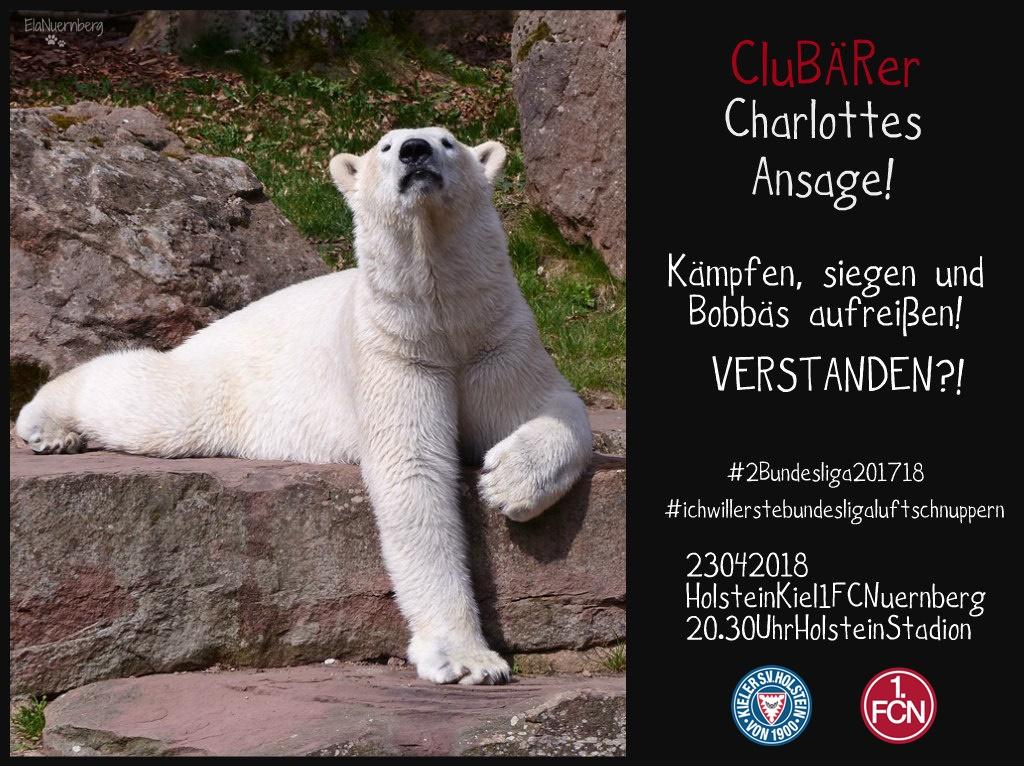 Vier, Drei, Zwo, Eins....Endspurt - CluBÄRer und Eisbär Charlotte - Tiergarten Nürnberg - 04/2018