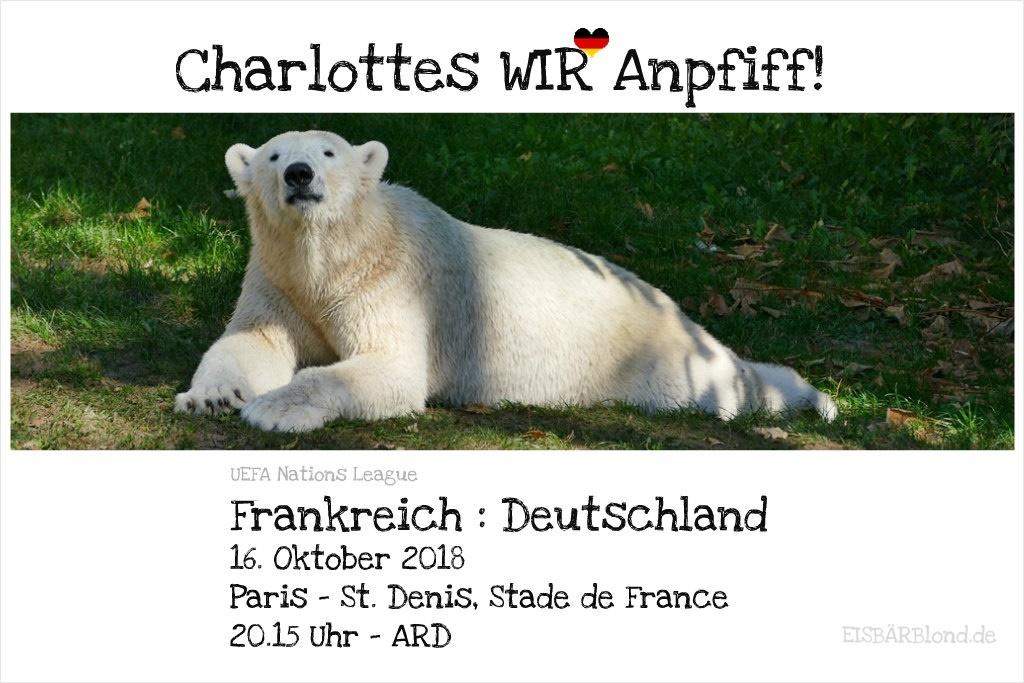 Eisbär Charlottes WIR-Anpfiff! - Frankreich - Deutschland - 16.10.2018