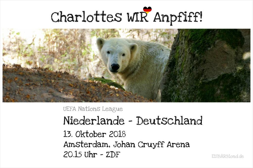 Charlottes WIR-Anpfiff! - Eisbär Charlotte im Tiergarten Nürnberg - 10/2018