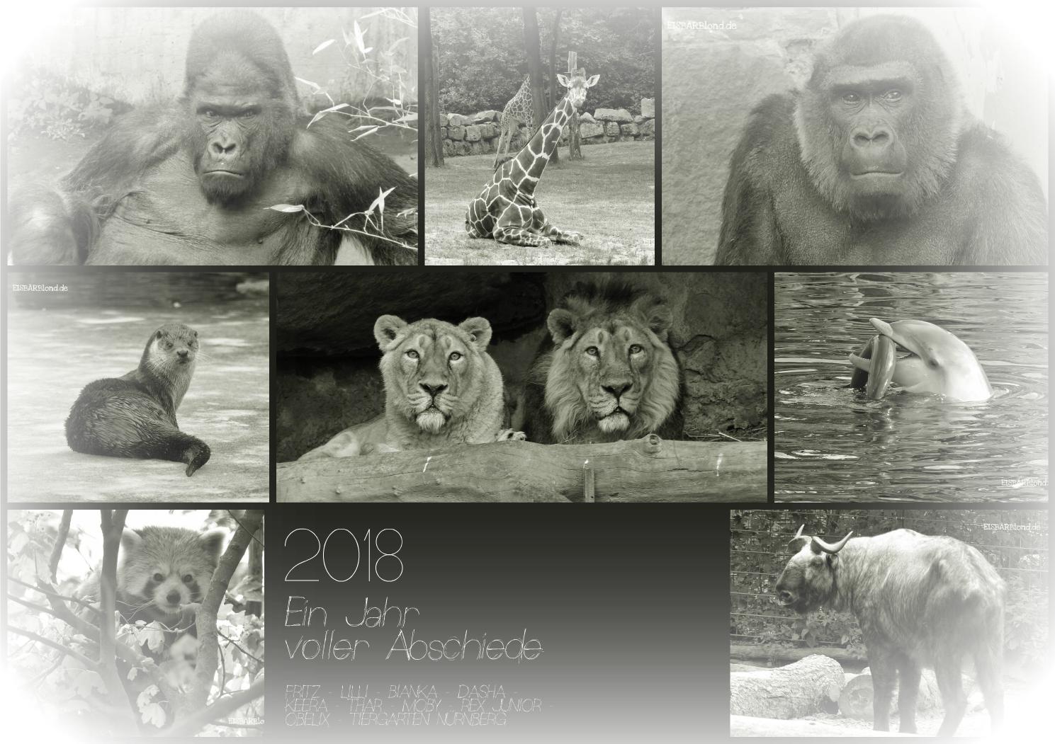 Abschiede - Tierische Persönlichkeiten im Tiergarten Nürnberg