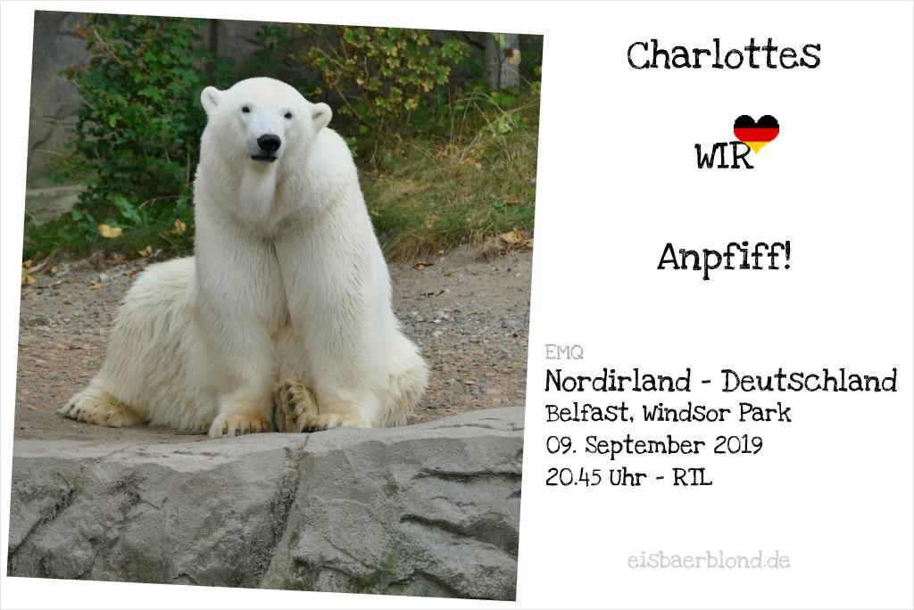Eisbär Charlottes WIR-Anpfiff - Nordirland - Deutschland - EMQ - 09.09.2019