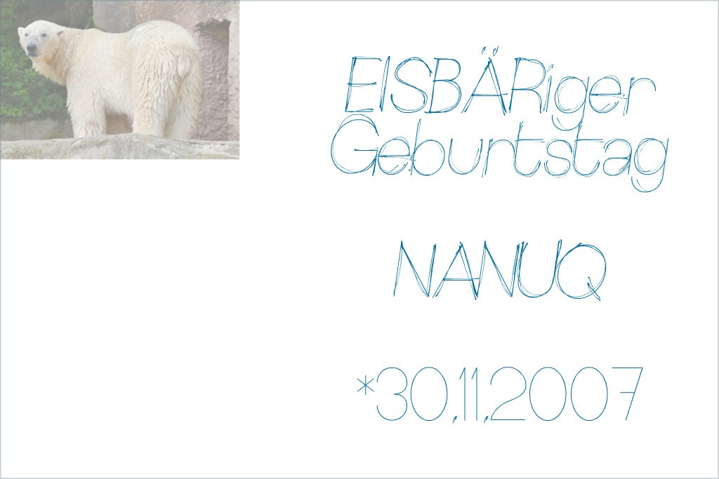 EISBÄRiger Geburtstag - NANUQ - 30.11.2007 - Tiergarten Nürnberg