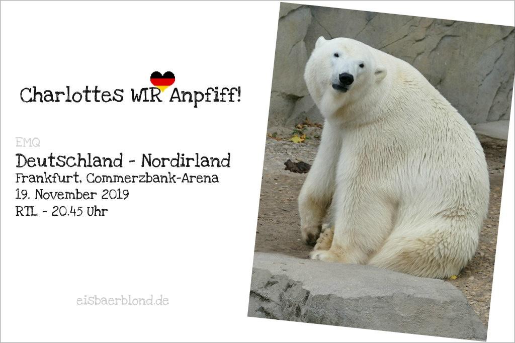 Eisbär CHARLOTTES WIR-Anpfiff - Deutschland - Nordirland - 19.11.2019 . EMQ