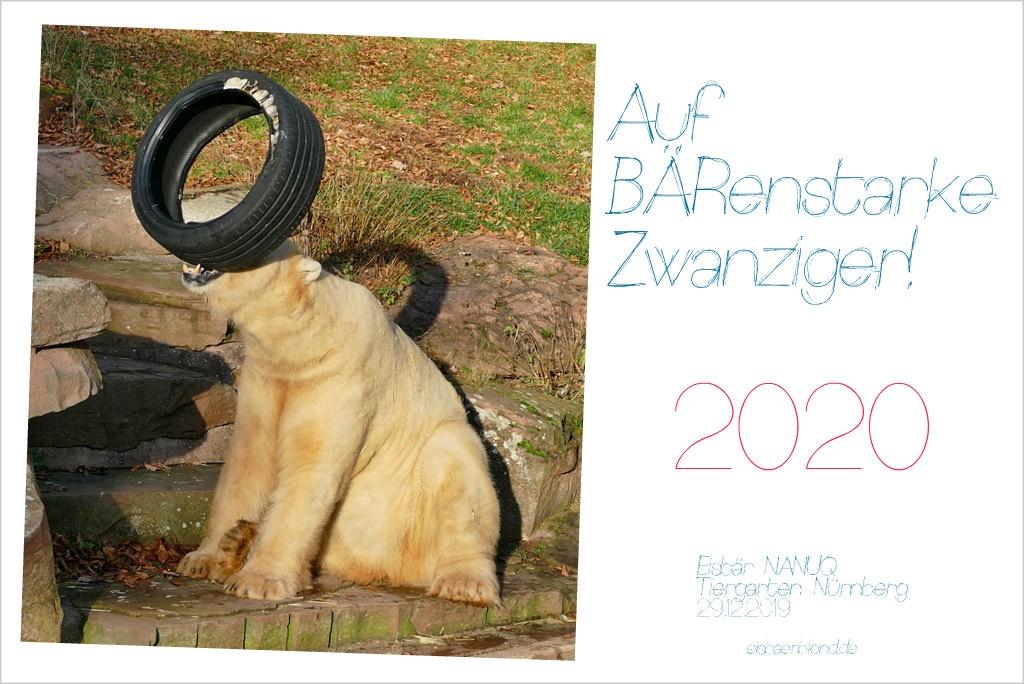BÄRenstarke Zwanziger - Eisbär NANUQ - Tiergarten Nürnberg - 29.12.2019