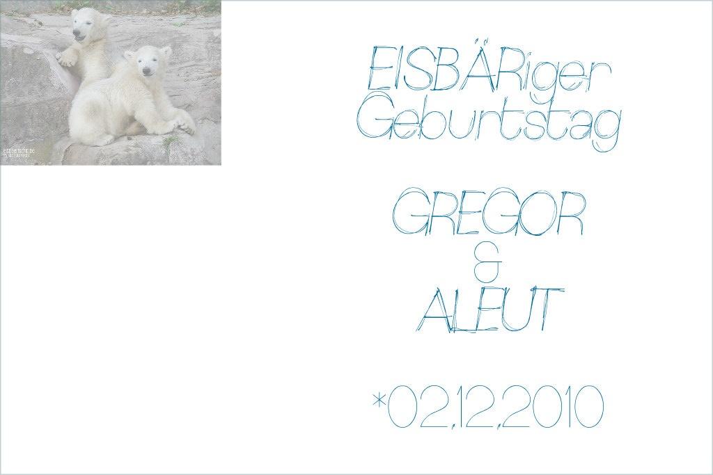 EISBÄRiger Geburtstag - GREGOR - ALEUT - 02.12.2010 - Tiergarten Nürnberg