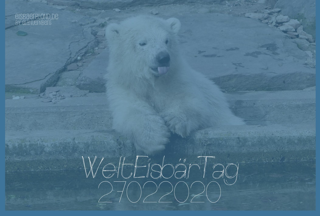 WeltEisbärTag 2020 - 27.02.2020 -