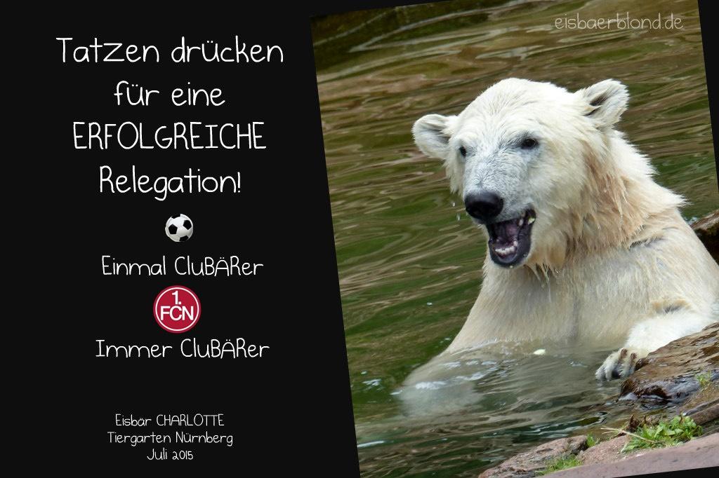 CluBÄRer Charlotte - Relegation - 2019 2020 - 1