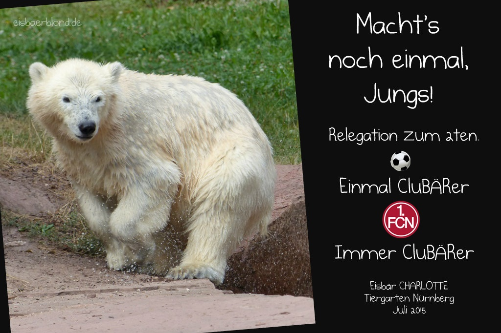 Macht's nochmal Jungs! - CluBÄRer Charlotte - Relegation - 2019 2020 - 2