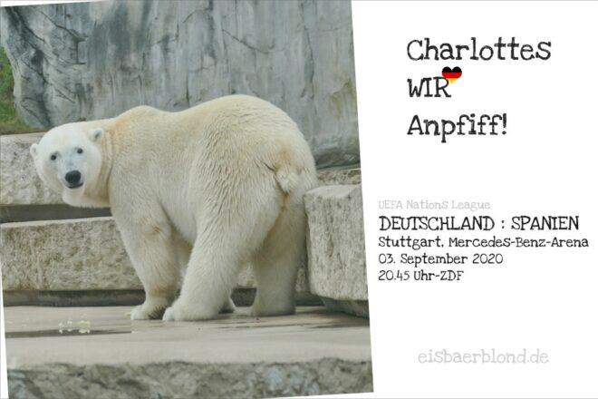 Eisbär CHARLOTTES WIR-Anpfiff - Deutschland - Spanien - 03.09.2020