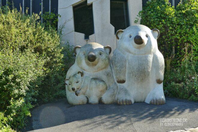 Eisbären mit Wiener Schmäh - Tiergarten Schönbrunn