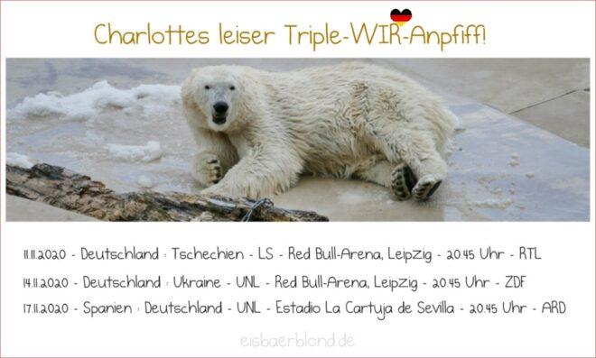 Eisbär Charlotte - Triple-WIR-Anpfiff - November 2020