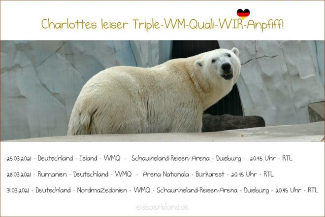 Triple-WM-Quali-WIR-Anpfiff - Eisbär Charlotte - 2021