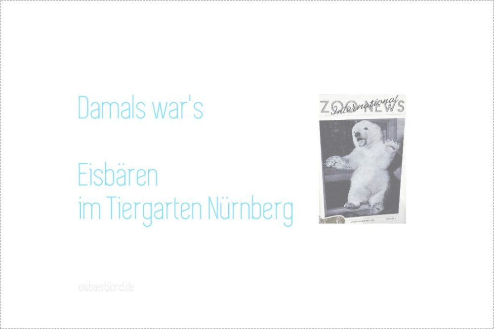 Damals war's - Eisbären im Tiergarten Nürnberg