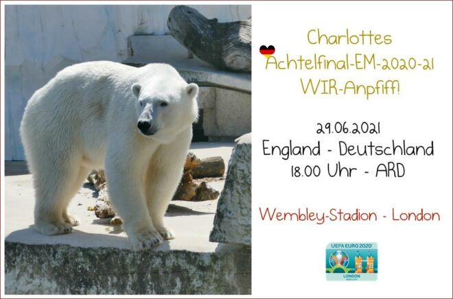 Achtelfinal-EM-2020-21 WIR-Anpfiff - Eisbär Charlotte