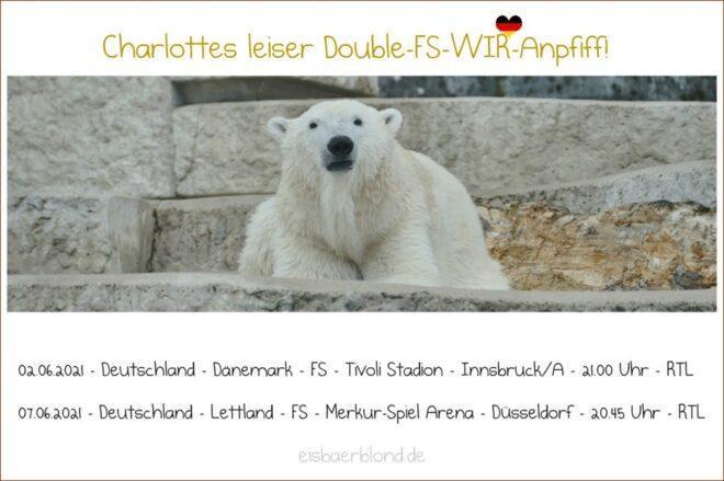 WIR-Eisbär Charlotte leiser Double-FS-WIR-Anpfiff - 2021