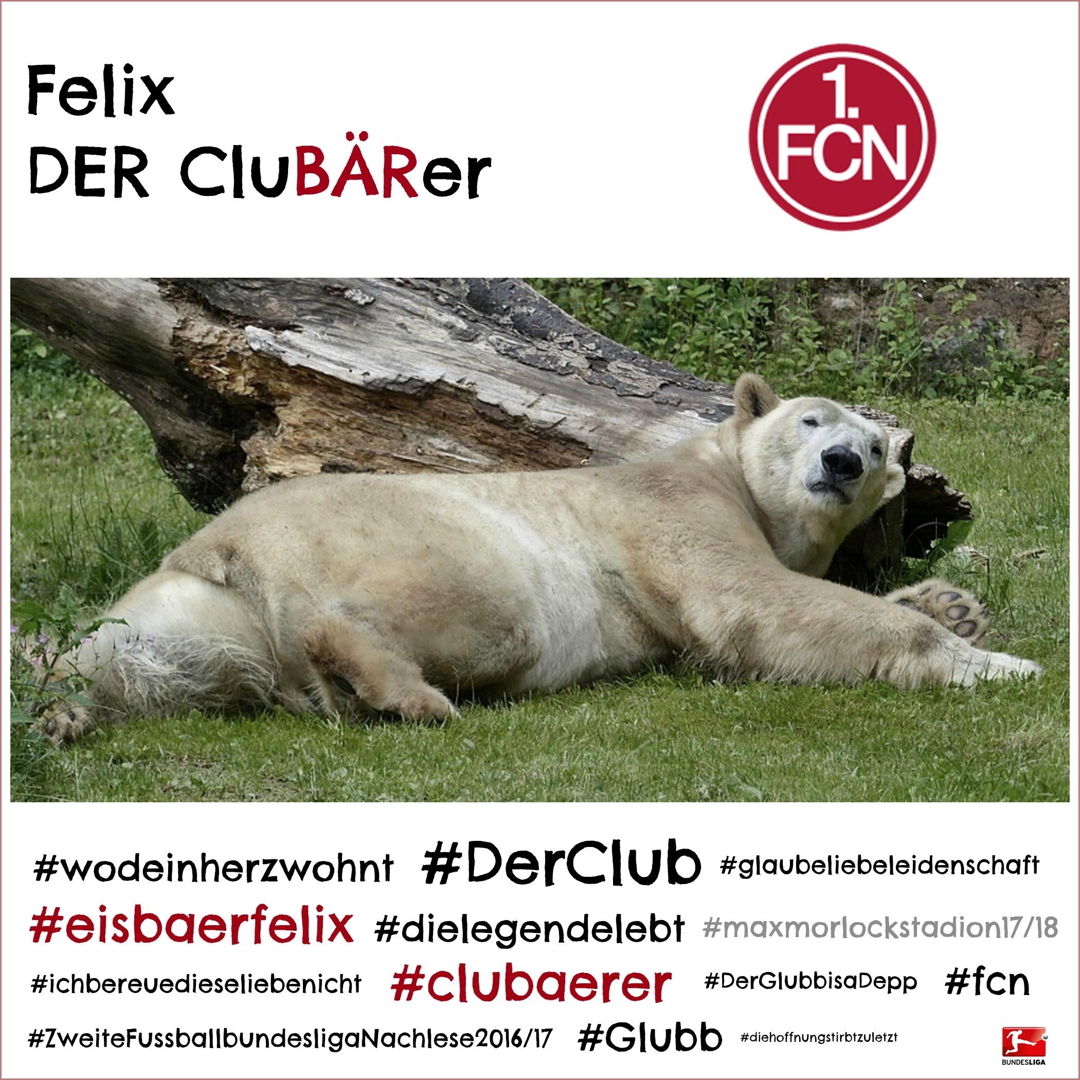 Fußball-Bundesliga 2016/2017 mit CluBÄRer Felix - Tiergarten Nürnberg