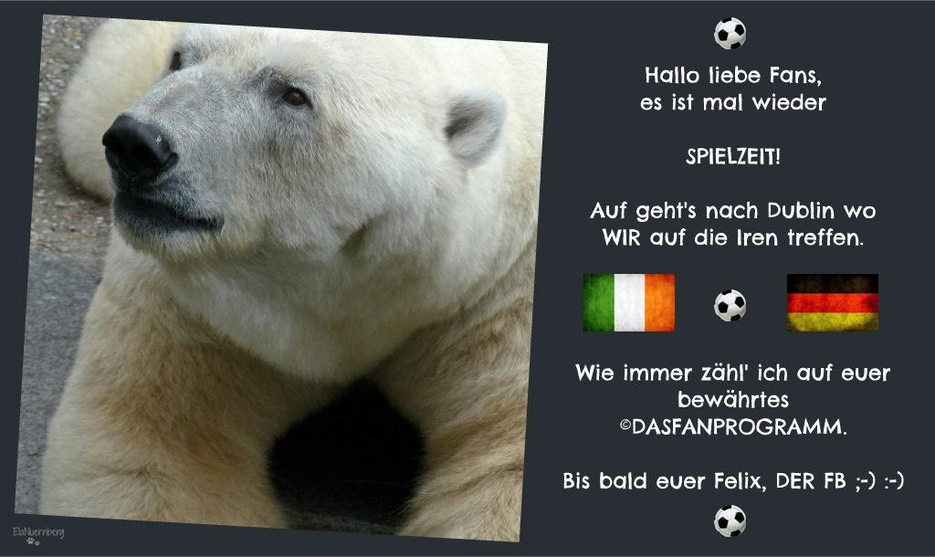 Eisbär Felix DER Fanbeauftragte - Eisbär-Felix-FB- Republik Irland - WIR - 2015-10-08 -
