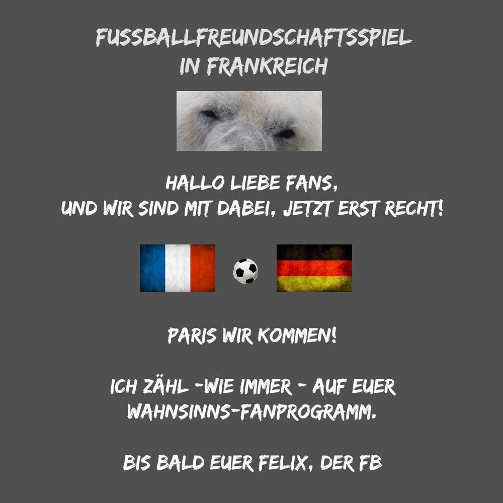 Eisbär Felix DER Fanbeauftragte - FB Felix - Frankreich - WIR - FFS - 13.11.2015