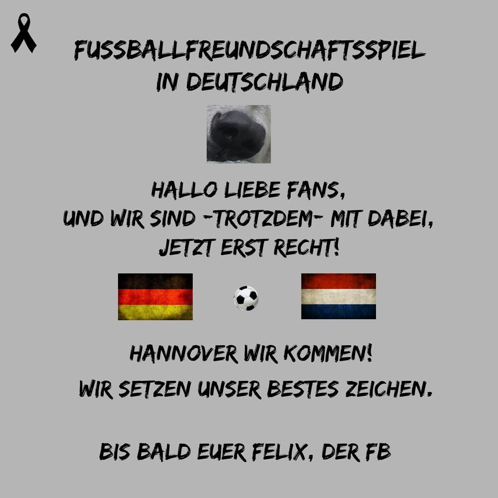 Eisbär Felix DER Fanbeauftragte - FB Felix - WIR - Niederlande - FFS - 17.11.2015